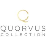 Quorvus's logo