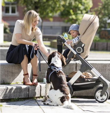 mothercare women with dog and baby in pushchair